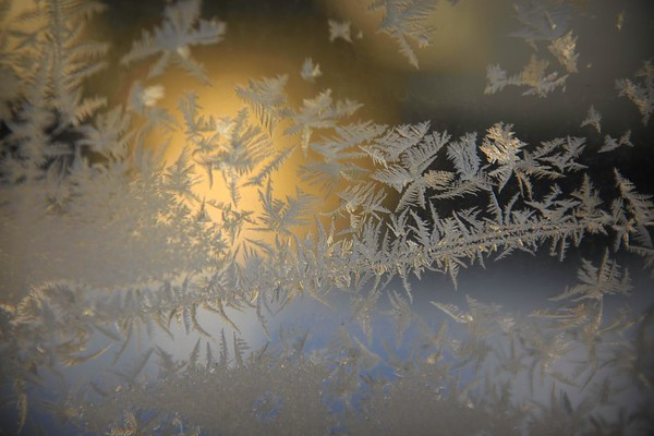 frosted, winter window ...