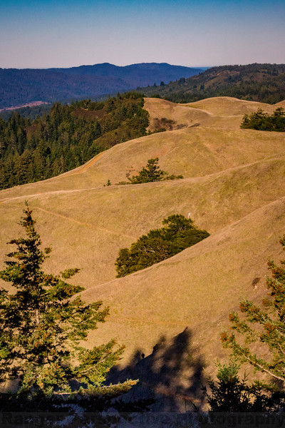 Bolinas Ridge and Coastal Trail