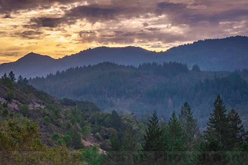Mount Tam from Liberty Gulch