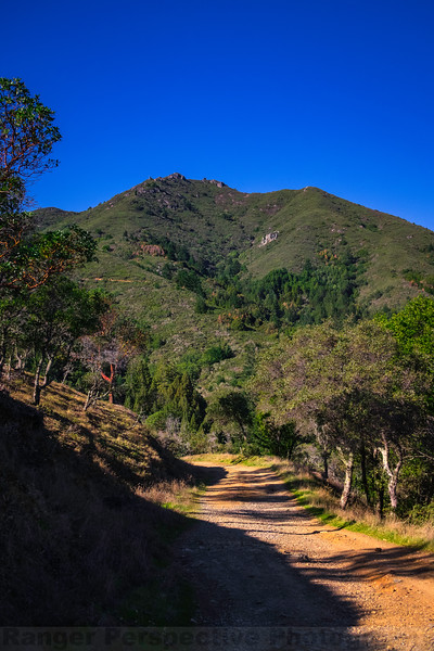 The East Peak of Mount Tam from Old Railroad Grade near the Summit Avenue Gate
