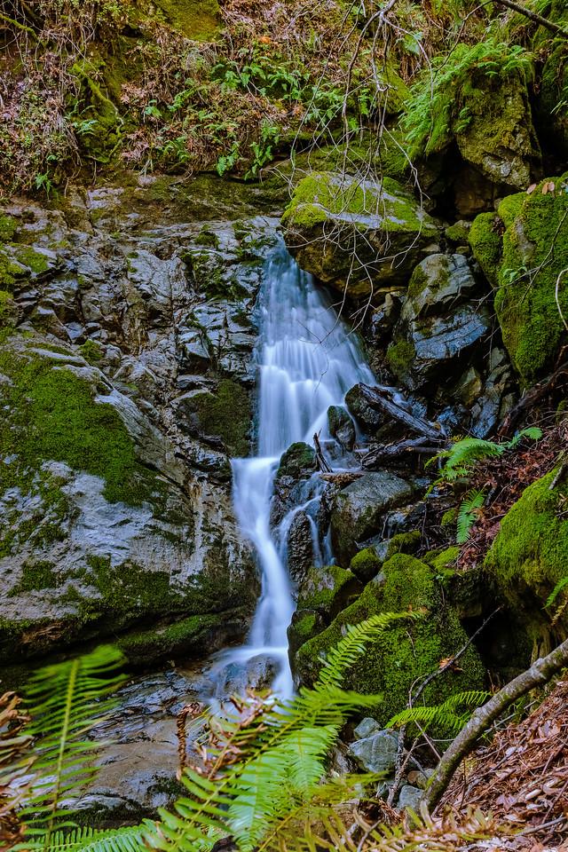 Van Wyck Creek near Kent Trail