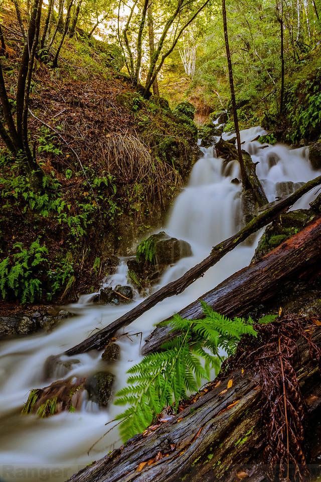 Unnamed Creek along Kent Pump Road