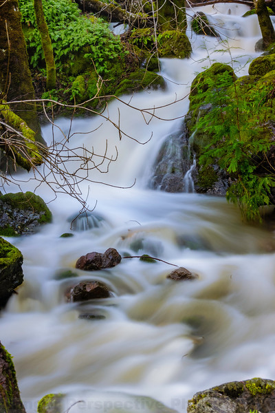 Highflow in Little Carson Creek