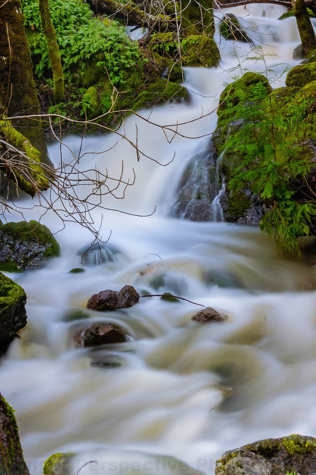 Highflow in Little Carson Creek