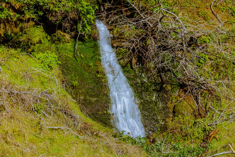 Ephemeral Waterfall on Bolinas Road