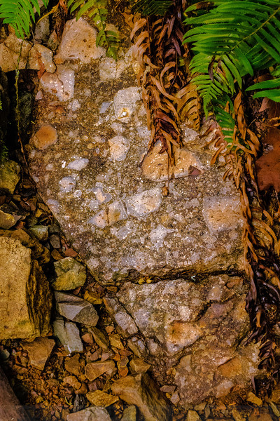 Kent Pump Road Geology Lesson: Breccia