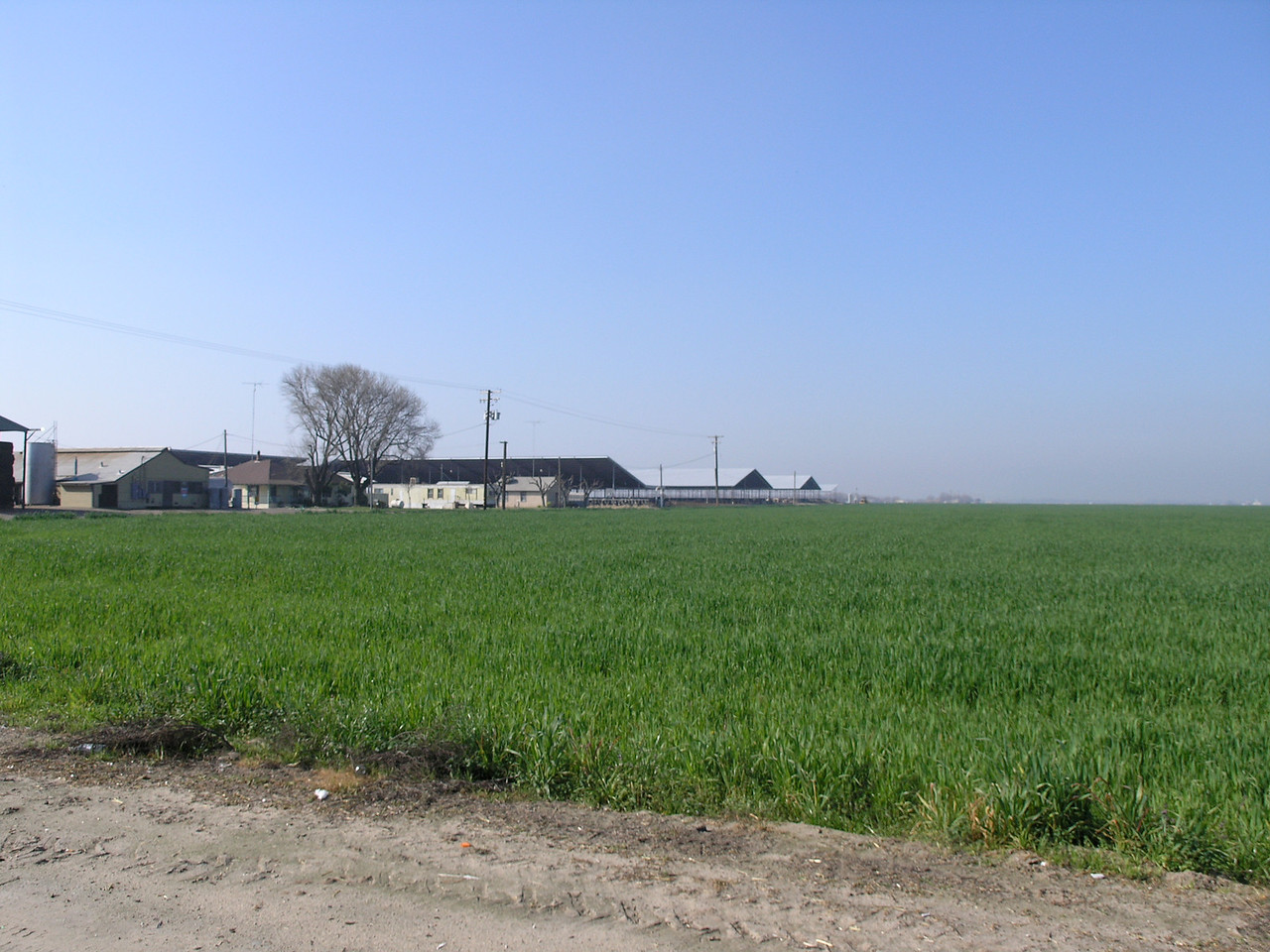 These are building of a fairly good sized dairy. The barns are in the distance.