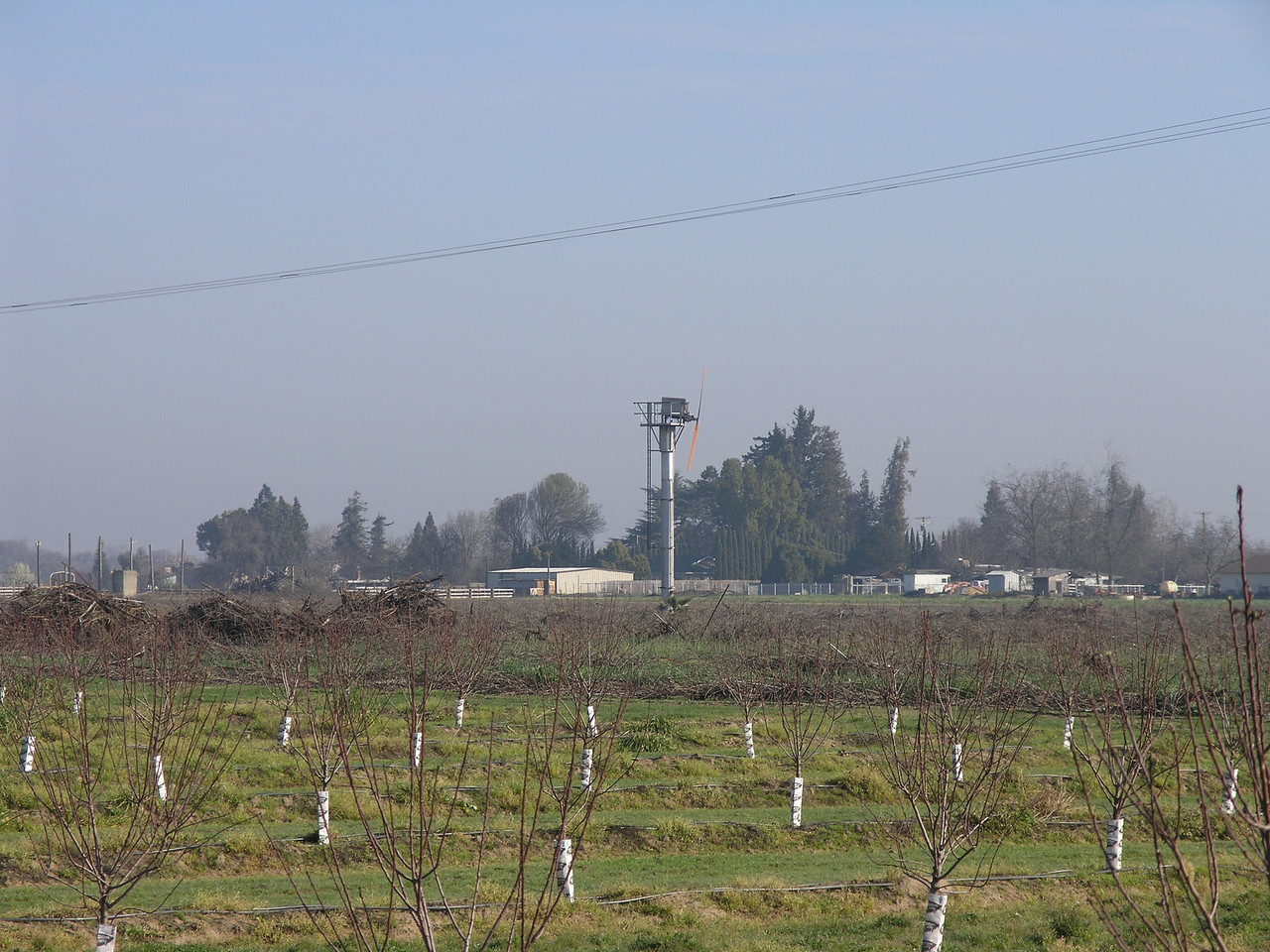 This is a young almond orchard with a wind machine in the background. The wind machine is used when we get cold weather during the first few weeks of nut development.<br /> <br /> Usually there is a cold layer with a warmer layer just above the trees. <br /> The wind machines stir the air and mix the warm air with the cold air to keep the fragile nuts from freezing.