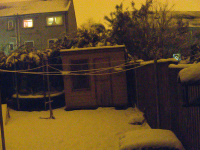 View from the back door, almost midnight and clear as day as a result of the snow