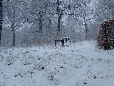 Crossroads in Bluebell Woods in the snow