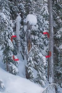 British Columbia - Canada