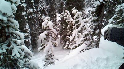 Winter 2010 2011