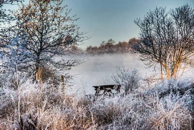 frozen-frost-field-1