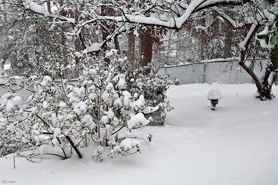 Snowstorm 02 06 '10