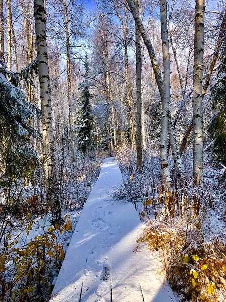 Credit: Amy Geiger/Explore Fairbanks