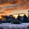 frosty-winter-sunrise-2-2