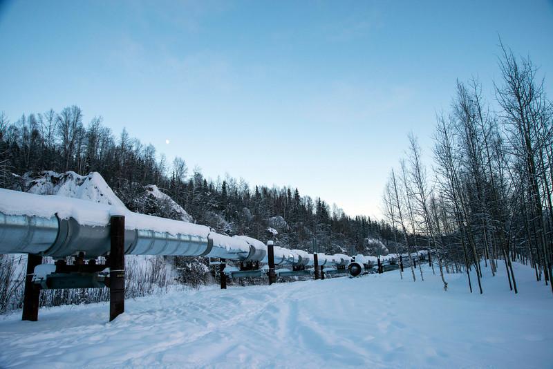The trans-Alaska oil pipeline near Fairbanks, Alaska.