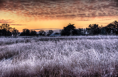 frosty-winter-sunrise-3