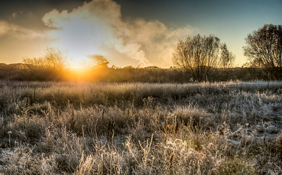 steamy-winter-field-3