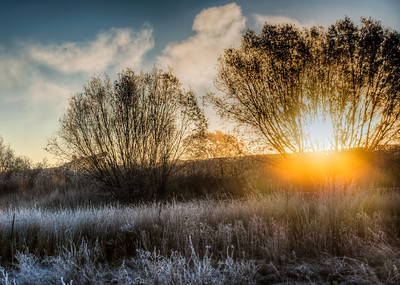steamy-winter-frost-2