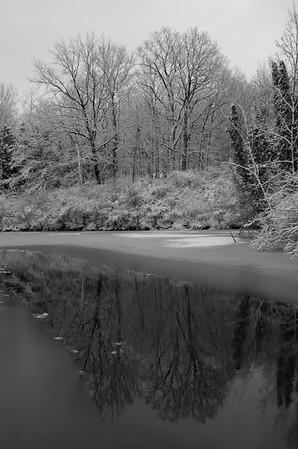 """""""pond reflection"""""""