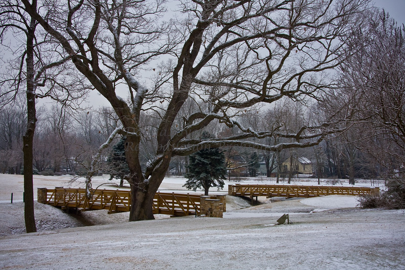 snow-7166