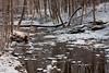 Bucks County Creek in the Snow, PA