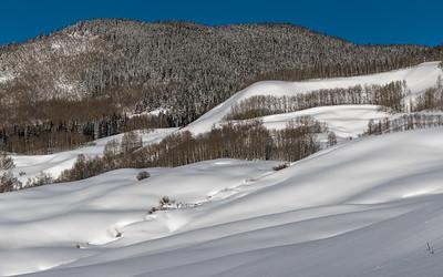 Snodgrass Mountain Snow Meadows