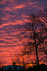 Winter Dawn, 12-13-13_300dpi©DonnaLovelyPhotos com_
