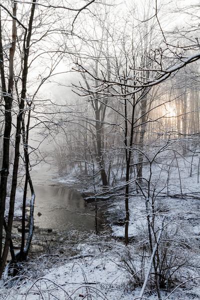 Snowy, Foggy Dawn_0505_400dpi©DonnaLovelyPhotos com_