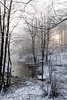 Snowy, Foggy Dawn_0505_400dpi©DonnaLovelyPhotos com_