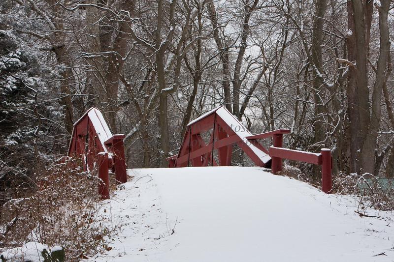 snowy WashingtonXngPk-6628