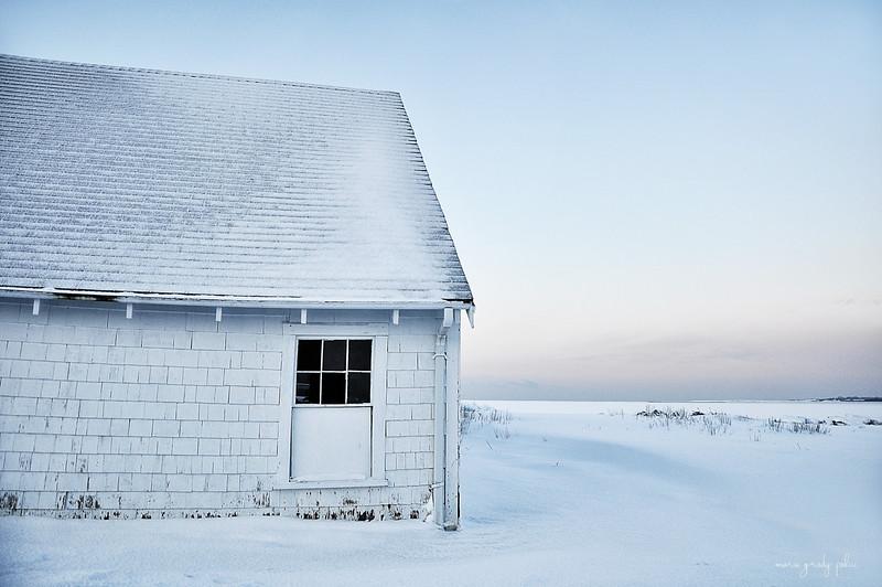winter blues...