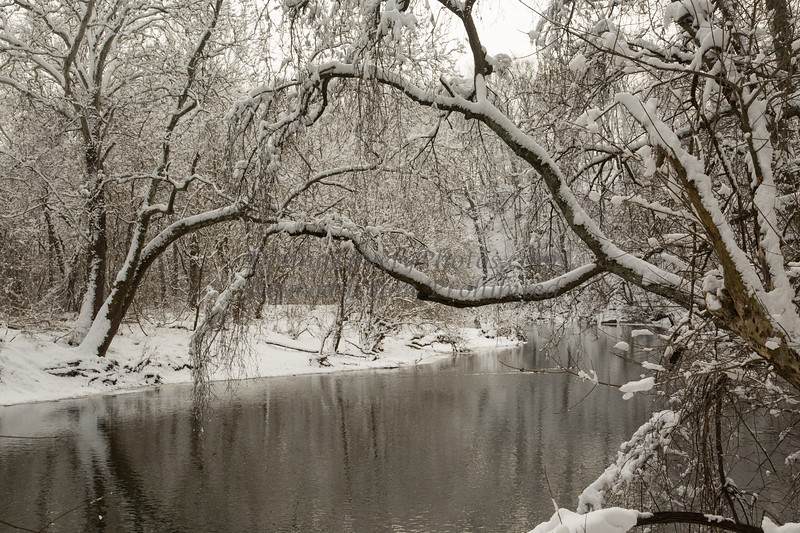 winter, heavy snow 2-4-14©DonnaLovelyPhotos com-4031-2