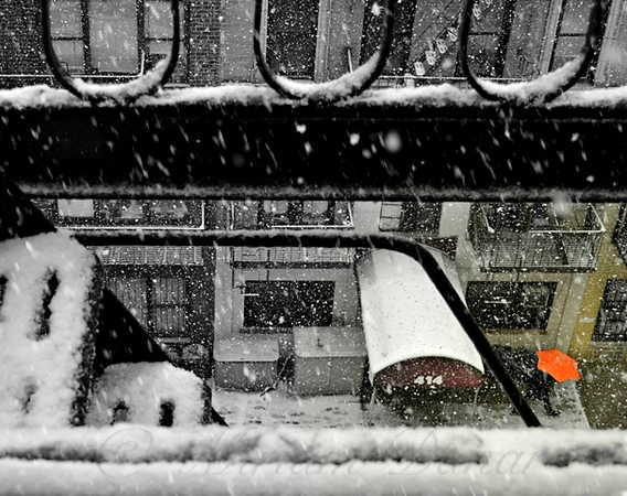 Orange Umbrella in the Snow - Winter in New York