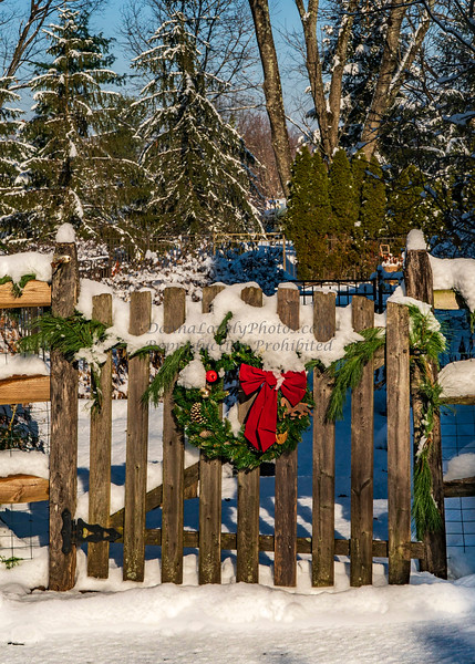 Snowy Wreath on Our Gatea-06928_12-17©DonnaLovelyPhotos com -06928