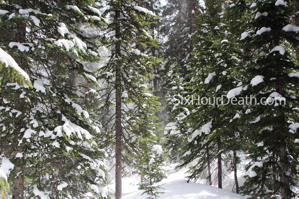 Blown Snow