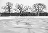Abstract Snowy Pond&Trees,b&w_2-2-21_9938©DonnaLovelyPhotos com -
