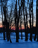 PreDawn,Snow,Fence,Trees_12-16-13_2692hdr,300dpi©DonnaLovelyPhotos com_