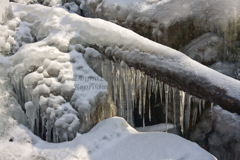 icicles-7546