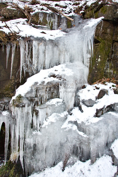 icicles-7321