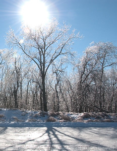 015-winterscape-wdsm-13dec07-c3-1885