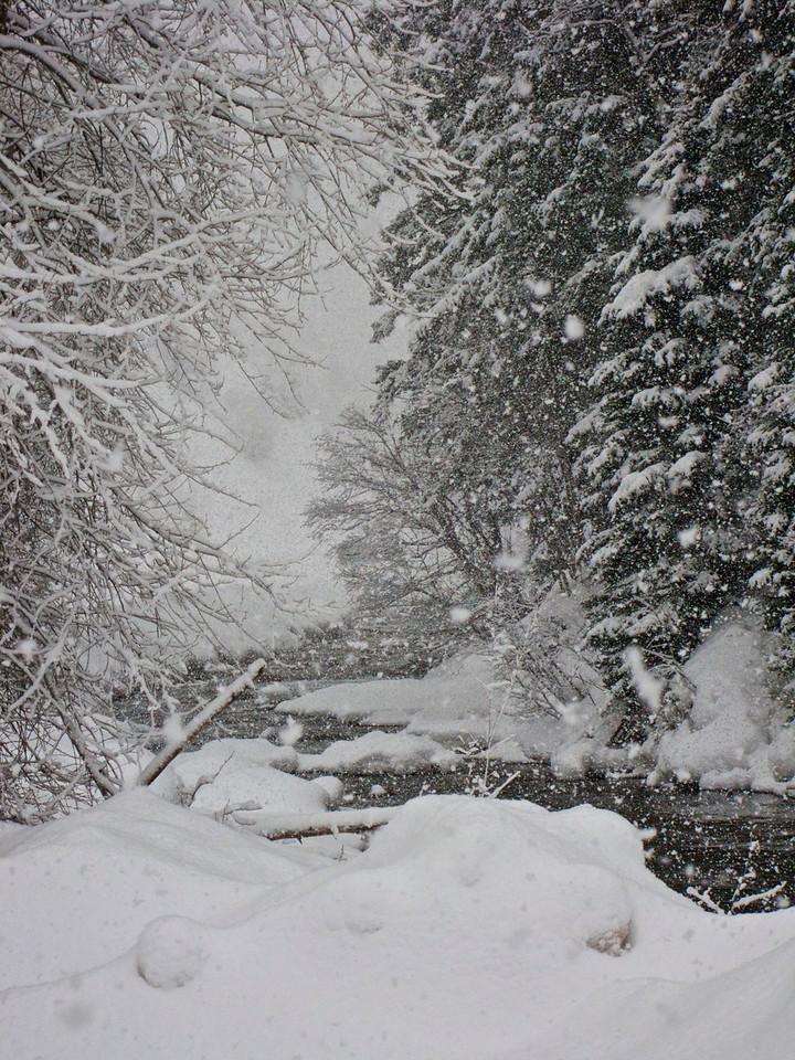 winter 2009 10