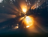 Foggy Sunrise,12-13-20_9584©DonnaLovelyPhotos com -9584