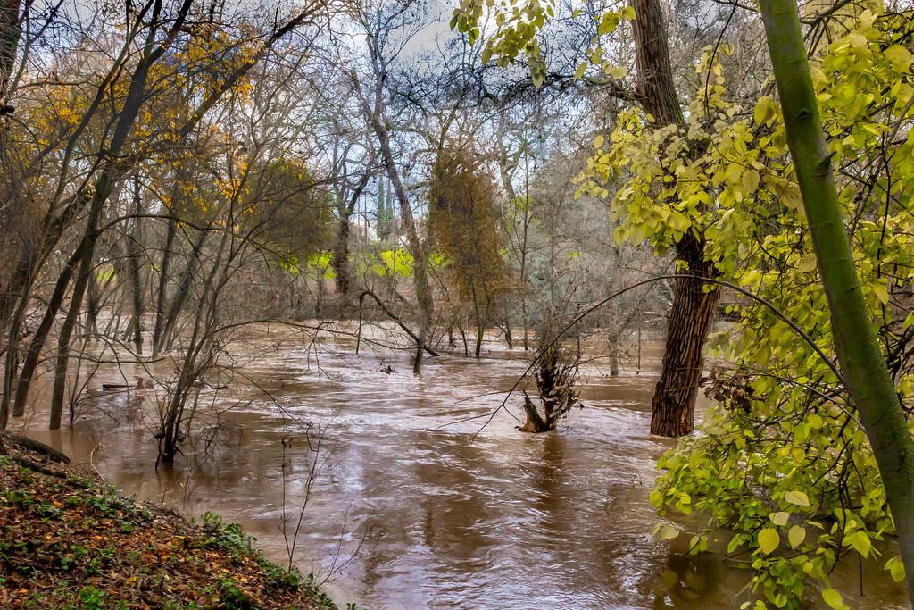 Modesto Floods