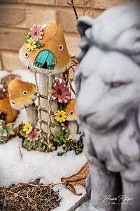 Fairy house in my fairy garden by my house. The lion, Guardian, stands watch in the front of the garden, protecting the fairies and the family. Enjoy and hold hands.