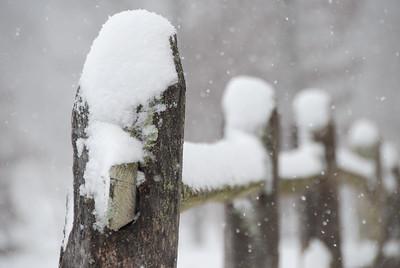 Snowy Rail Fence