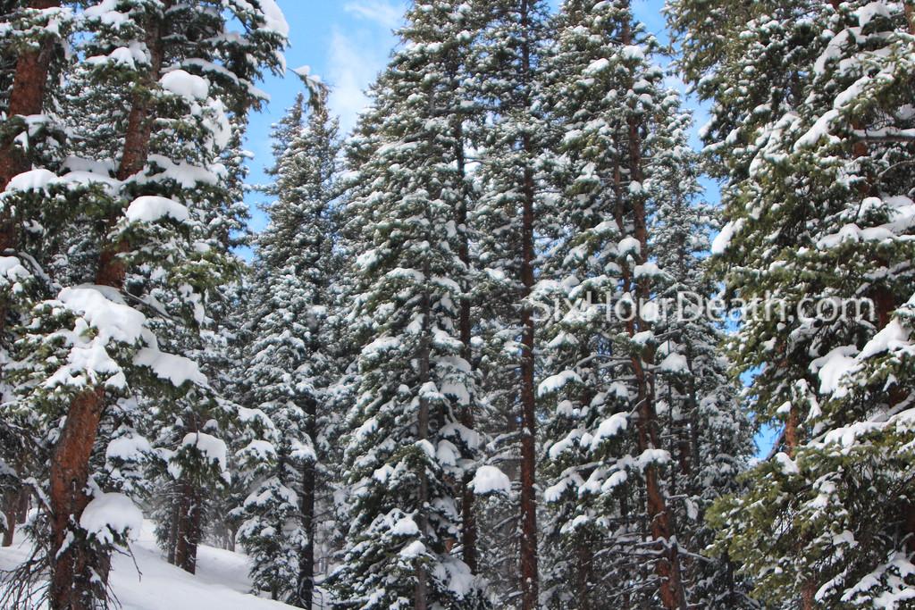 Chromatic Snow