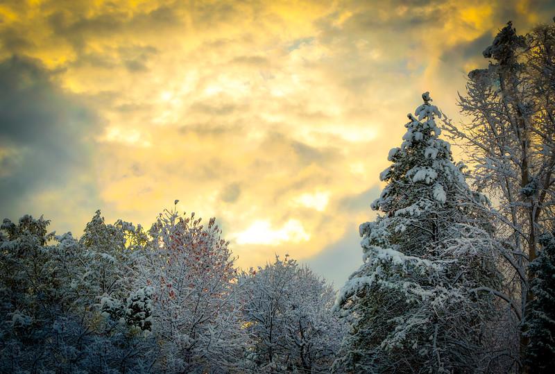 First Snow Sunrise