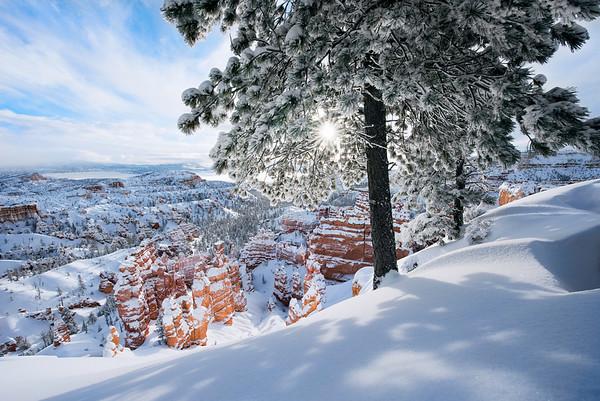 """""""Frozen Desert"""""""